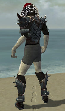 Necromancer Asuran Armor M gray chest feet back