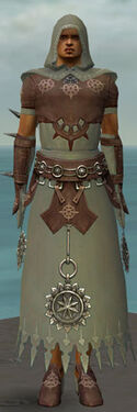Dervish Sunspear Armor M gray front