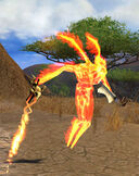 Immolated Djinn