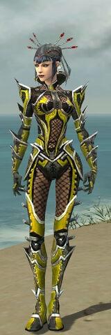 File:Necromancer Elite Kurzick Armor F dyed front.jpg