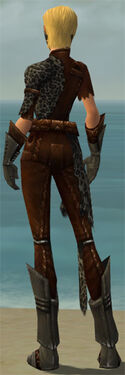 Ranger Istani Armor F gray back