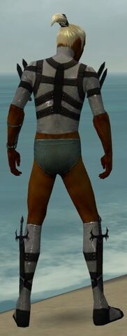 File:Assassin Obsidian Armor M gray chest feet back.jpg
