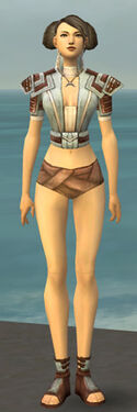 Monk Censor Armor F gray chest feet front