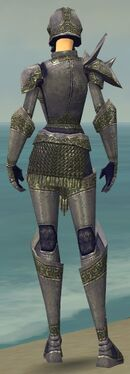 Warrior Platemail Armor F gray back