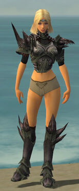 Warrior Primeval Armor F gray chest feet front