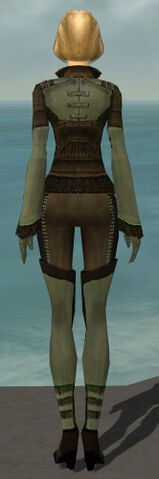 File:Mesmer Istani Armor F gray back.jpg