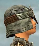 File:Warrior Sunspear Armor F gray head side.jpg