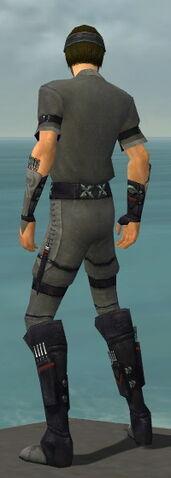 File:Assassin Shing Jea Armor M gray back.jpg