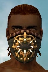 File:Ranger Elite Sunspear Armor M gray head front.jpg