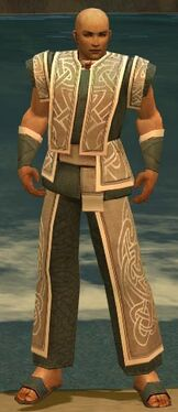 Monk Tyrian Armor M gray front