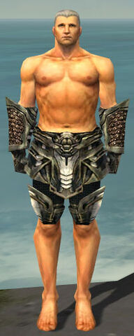 File:Warrior Elite Kurzick Armor M gray arms legs front.jpg