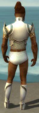 Paragon Asuran Armor M gray chest feet back