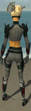 Assassin Seitung Armor F gray back