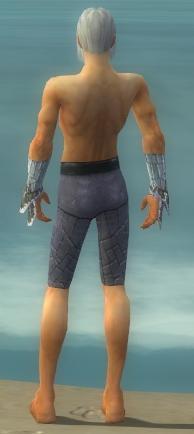 File:Elementalist Elite Iceforged Armor M gray arms legs back.jpg