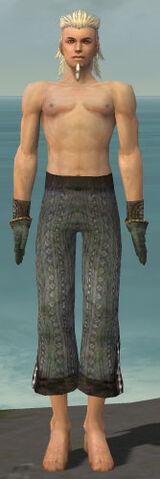 File:Elementalist Sunspear Armor M gray arms legs front.jpg