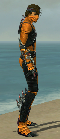 File:Assassin Elite Canthan Armor M dyed side.jpg