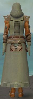 Dervish Istani Armor M gray back