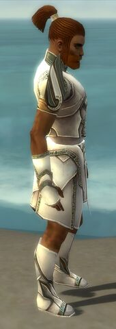 File:Paragon Asuran Armor M gray side.jpg