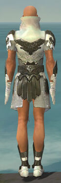 Paragon Elonian Armor M gray back