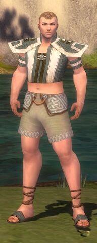 File:Monk Elite Saintly Armor M gray chest feet front.jpg