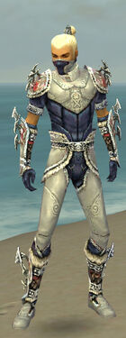 Assassin Norn Armor M dyed front