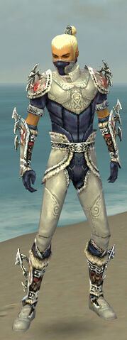 File:Assassin Norn Armor M dyed front.jpg