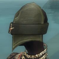 File:Ritualist Kurzick Armor F gray head side.jpg