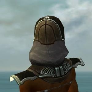 File:Dervish Asuran Armor F gray head back.jpg