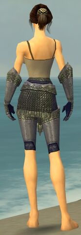File:Warrior Platemail Armor F gray arms legs back.jpg
