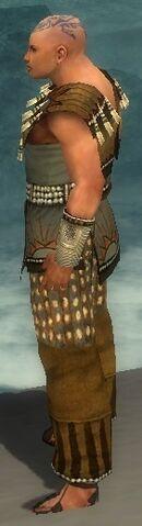 File:Monk Sunspear Armor M gray side.jpg