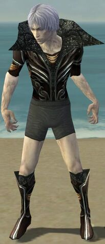 File:Necromancer Vabbian Armor M gray chest feet front.jpg