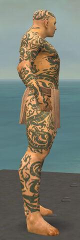 File:Monk Dragon Armor M gray side.jpg