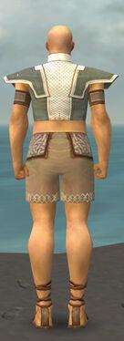 Monk Krytan Armor M gray chest feet back