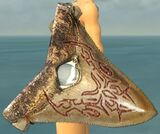 Sharktooth Shield