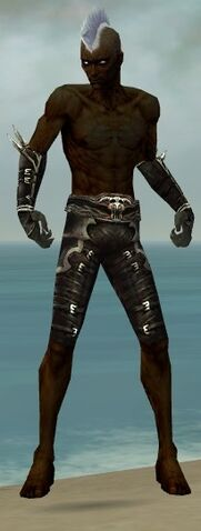 File:Necromancer Shing Jea Armor M gray arms legs front.jpg
