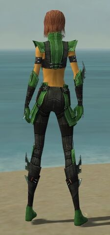File:Assassin Luxon Armor F dyed back.jpg
