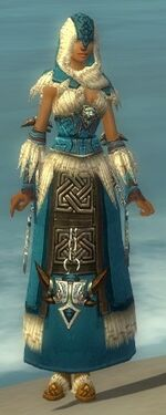 Dervish Norn Armor F dyed front