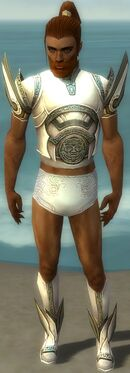 Paragon Asuran Armor M gray chest feet front