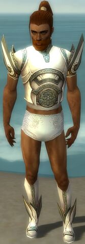 File:Paragon Asuran Armor M gray chest feet front.jpg