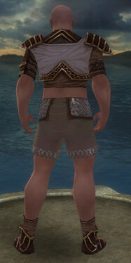Monk Elite Canthan Armor M gray chest feet back