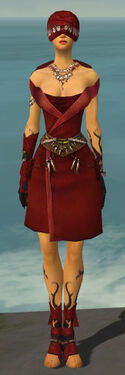 Ritualist Shing Jea Armor F dyed front