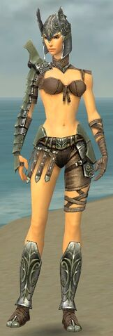 File:Warrior Elite Gladiator Armor F gray front.jpg