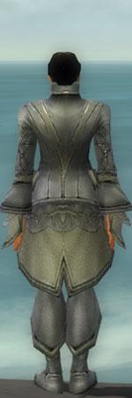 File:Elementalist Kurzick Armor M gray back.jpg