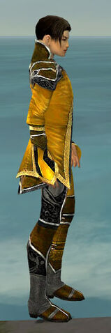File:Elementalist Shing Jea Armor M dyed side.jpg