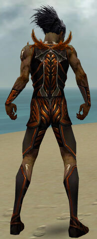 File:Necromancer Istani Armor M dyed back.jpg