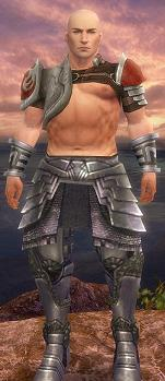 File:DLM-Warrior.jpg