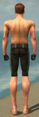 File:Mesmer Performer Armor M gray arms legs back.jpg
