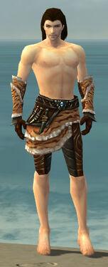 Ranger Vabbian Armor M gray arms legs front