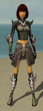 Assassin Deldrimor Armor F gray front