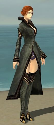 File:Mesmer Norn Armor F gray chest feet front.jpg